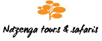 Ndzenga Tours and Safaris Logo