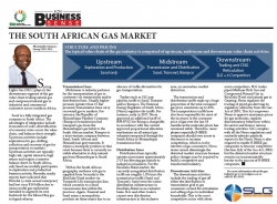 Nkosinathi Solomon - Group CEO, SLG : The South African Gas Market