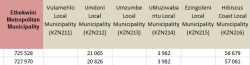 KZN Provincial Treasury:Passenger Summary