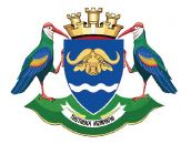 uMzinyathi District Municipality Logo